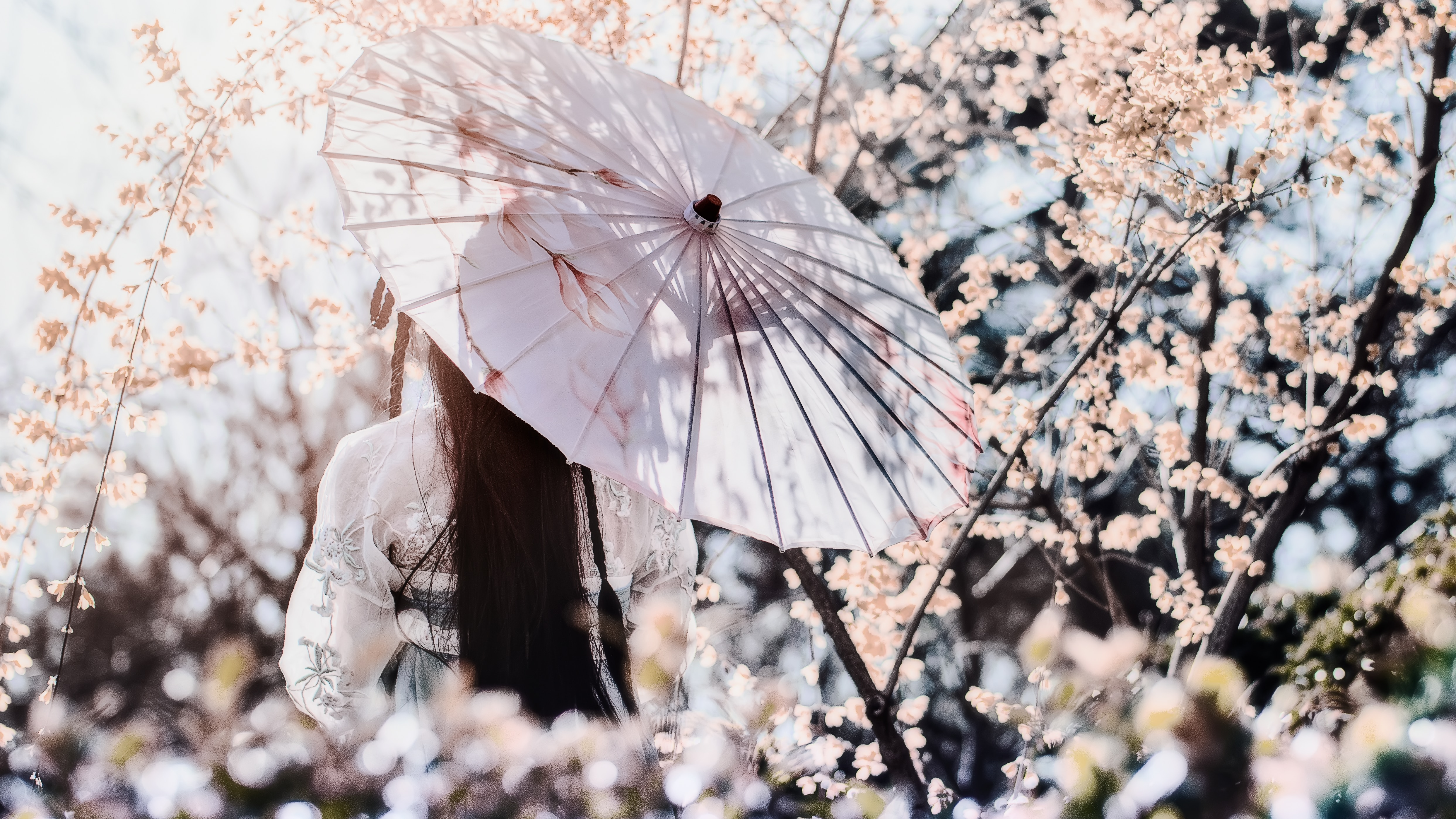 Atelier des saisons Yin Yoga & Acupuncture – Accueillir le Printemps – 15 février 2020